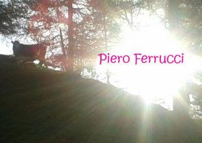 Ervaringen - Piero Ferrucci